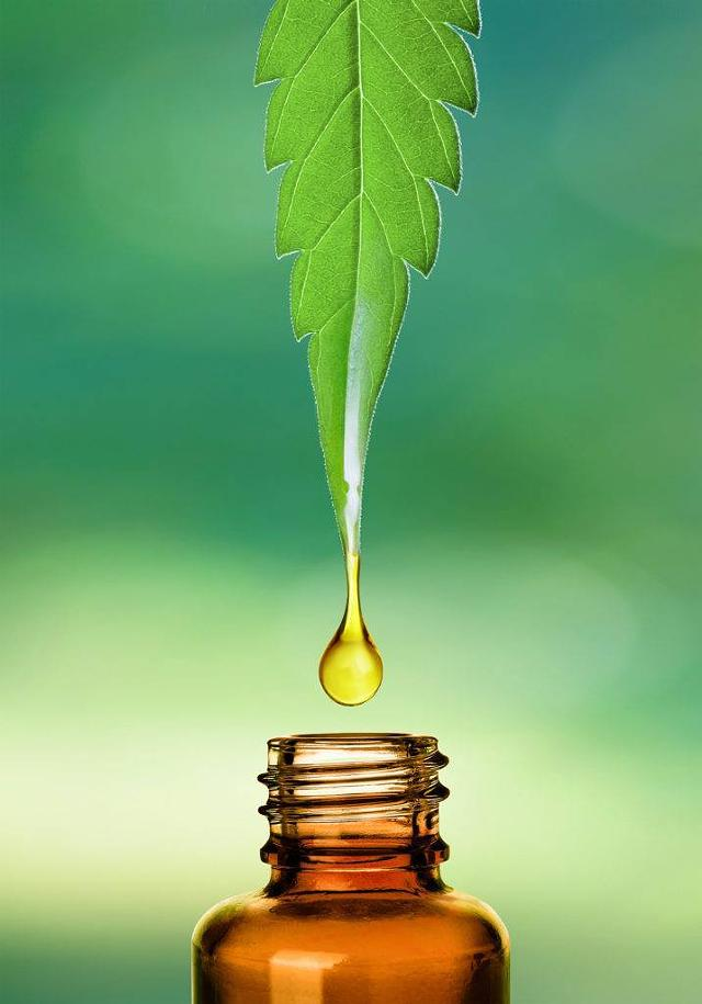 Is Hemp Oil And Cbd Oil The Same Product